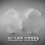 Black-Sheep-Black-Sheep-e1417496130461